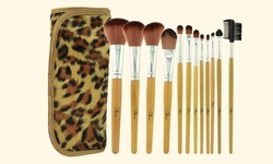 D and B Style 12 Piece Makeup Brush Set with Leopard Carry Pouch